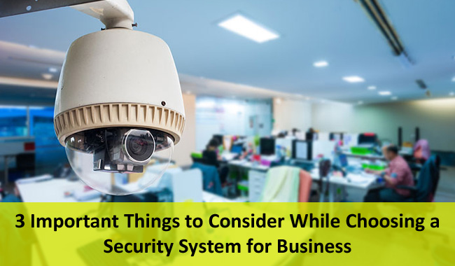 Security-system-business